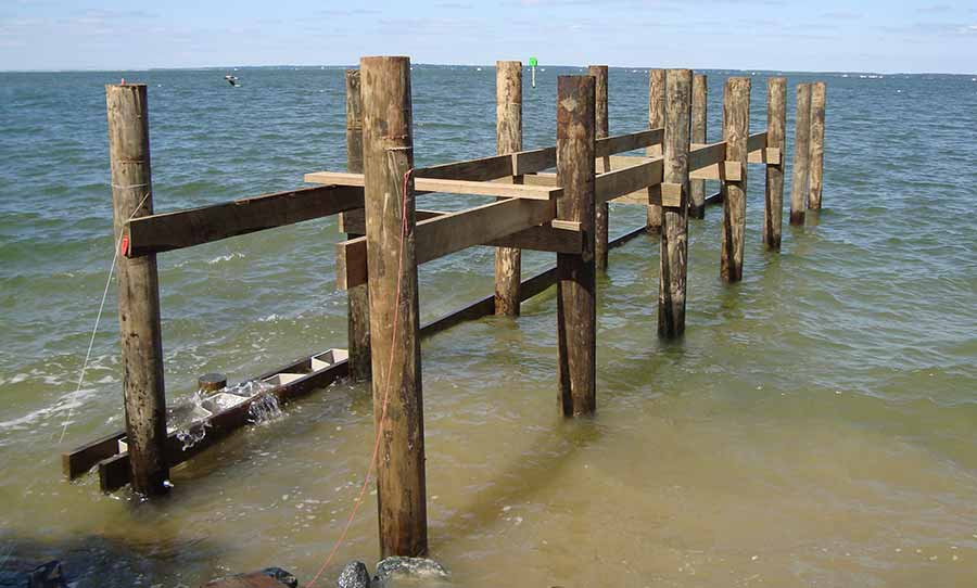 Pilings for pier construction